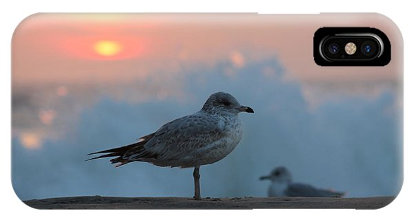 Seagull Seascape Sunrise IPhone Case
