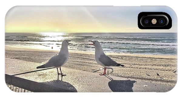 Qld iPhone Case - Seagull Sonnet  by Az Jackson
