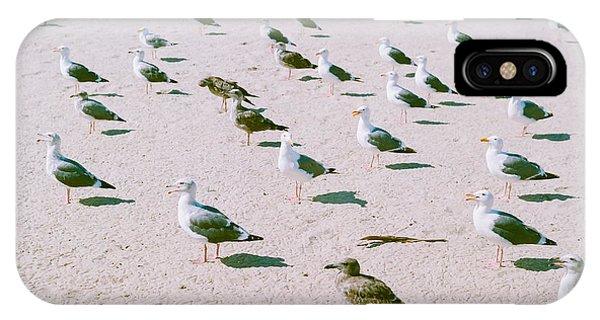 Seagulls  IPhone Case