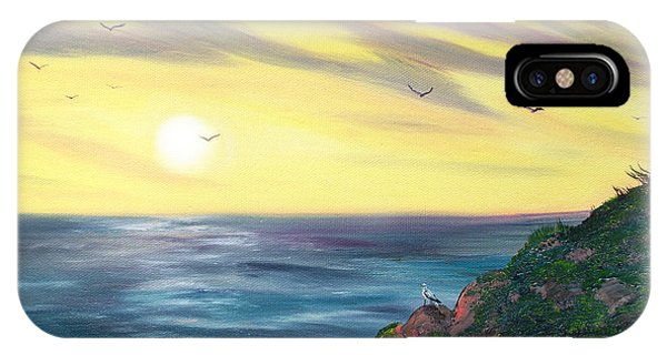 Half Moon Bay iPhone Case - Seagulls At Sunset by Laura Iverson
