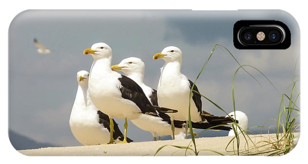 Seagulls At The Beach IPhone Case