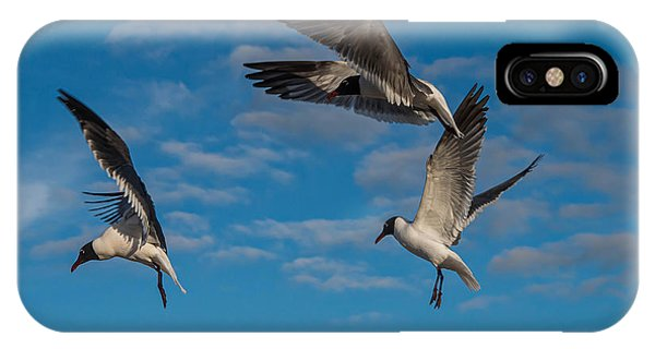 Seagulls In Flight IPhone Case