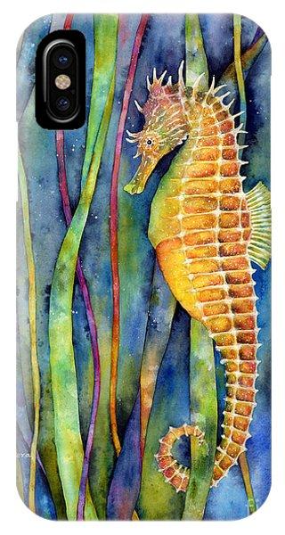 Aqua iPhone Case - Seahorse by Hailey E Herrera