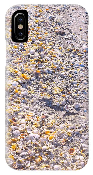 Seashells In Sanibel Island, Florida IPhone Case