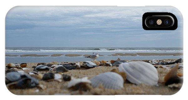 Seashells Seagull Seashore IPhone Case