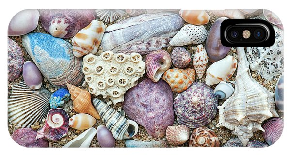 Shell Texture iPhone Case - Seashells by Tim Gainey
