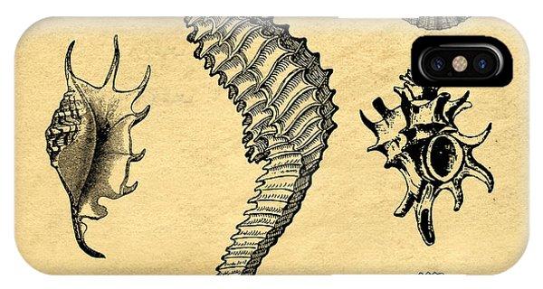 Seahorse iPhone Case - Seashells Vintage by Edward Fielding