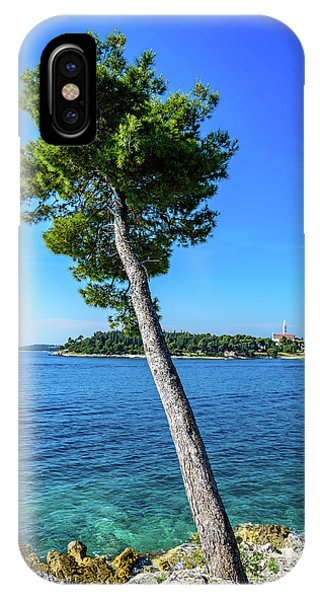 Seaside Leaning Tree In Rovinj, Croatia IPhone Case