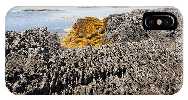 Seaweed On Rocky Coast IPhone Case