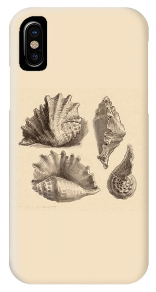 IPhone Case featuring the painting Seba's Spider Conch by Judith Kunzle