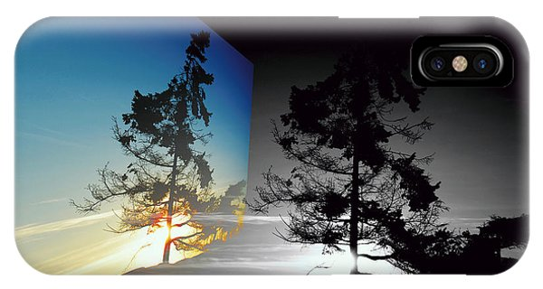 Sechelt Tree IPhone Case