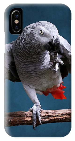 Secretive Gray Parrot IPhone Case