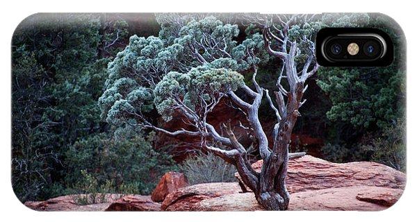 Sedona Tree #3 IPhone Case