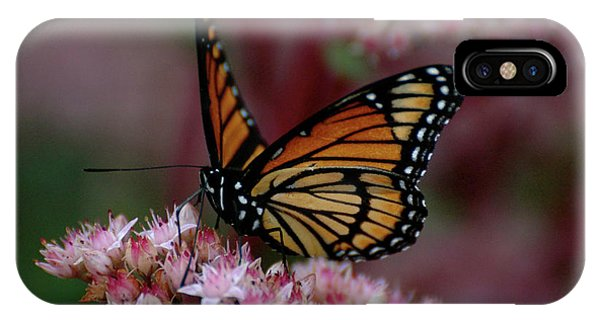 IPhone Case featuring the photograph Sedum Butterfly by Melissa Lane
