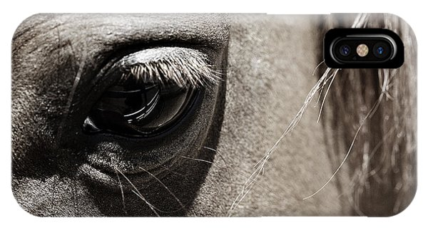 Stillness In The Eye Of A Horse IPhone Case