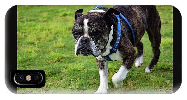 Leroy The Senior Bulldog IPhone Case