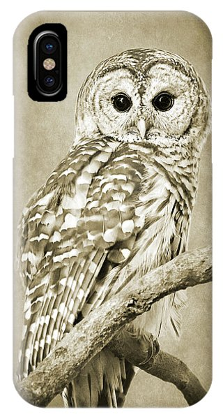 Bar iPhone Case - Sepia Owl by Christina Rollo