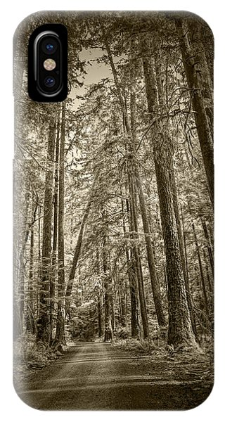 Sepia Tone Of A Rain Forest Dirt Road IPhone Case