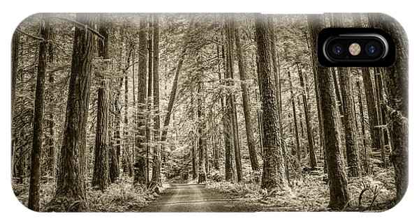 Sepia Tone Of A Road In A Rain Forest IPhone Case