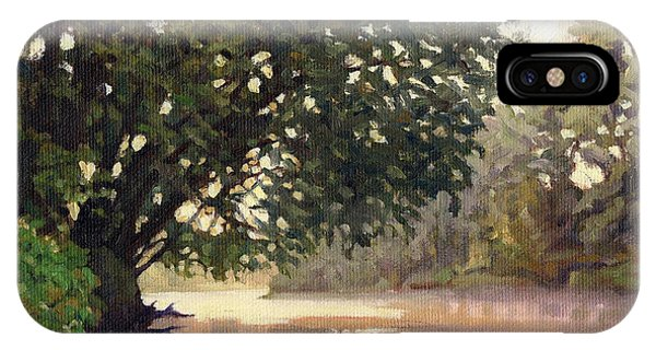 September Dawn Little Sioux River - Plein Air IPhone Case