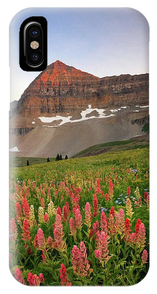 Indian Peaks Wilderness iPhone Case - September Wildflowers by Johnny Adolphson