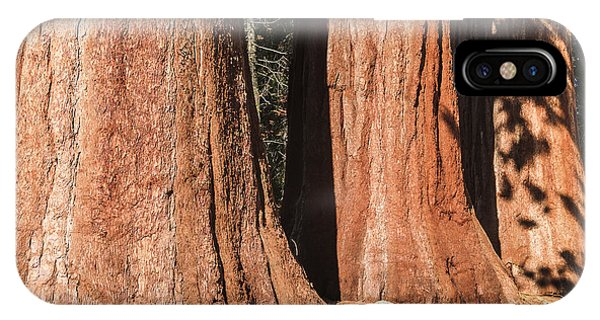 Sequoia IPhone Case