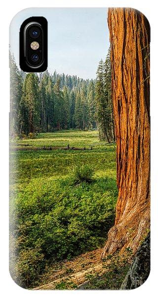 Sequoia Np Crescent Meadows IPhone Case