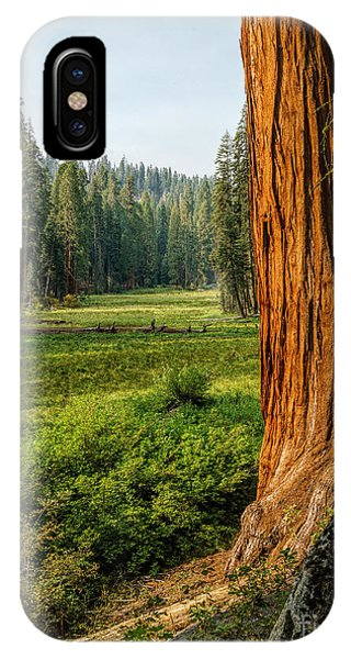 Sequoia Np Crescent Meadows IPhone Case