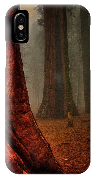 Sequoias In The Clouds IPhone Case
