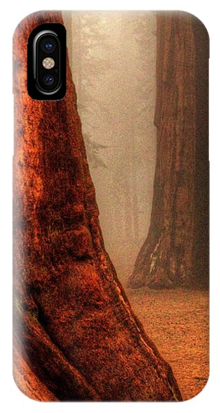 Sequoias Touching The Clouds IPhone Case