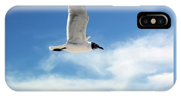 Serenity Seagull IPhone Case