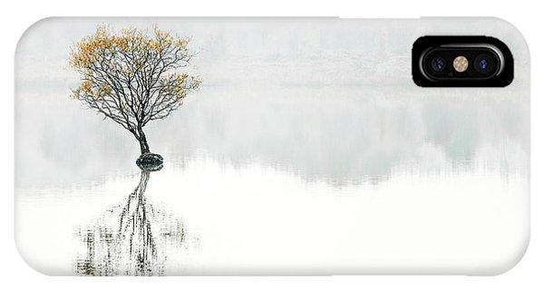 Desolation iPhone Case - Serenity Song by Evelina Kremsdorf