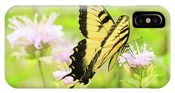 Series Of Yellow Swallowtail #4 Of 6 IPhone Case