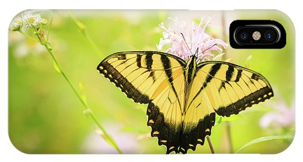 Series Of Yellow Swallowtail #6 Of 6 IPhone Case