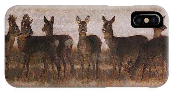Seven Roe Deers IPhone Case