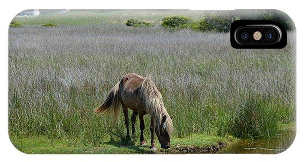 Shackleford Pony IPhone Case