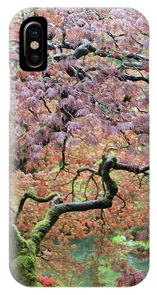 IPhone Case featuring the photograph Shaded By Beauty by Brandy Little