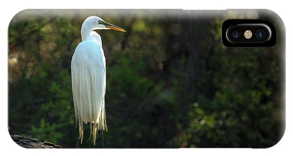 Shadow Heron IPhone Case
