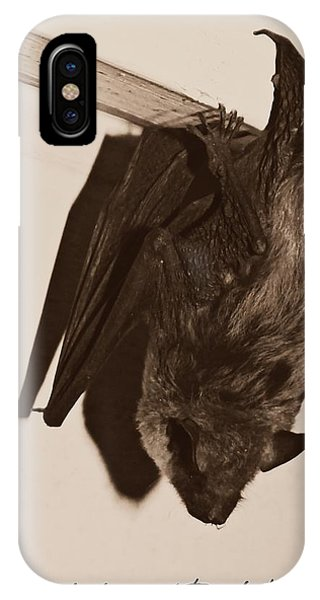 Shadow Of The Bat IPhone Case