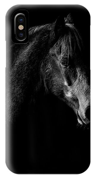 Equine iPhone Case - Shadow by Paul Neville