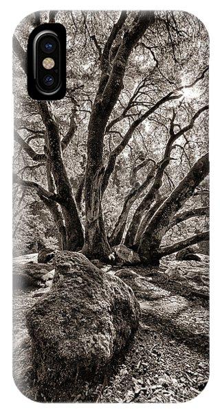 Shadow Tree IPhone Case