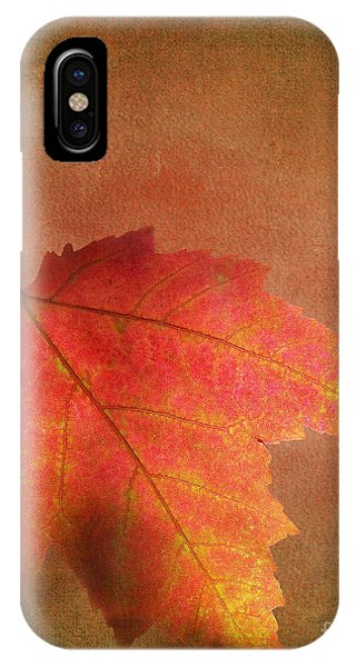 Shadows Over Maple Leaf IPhone Case