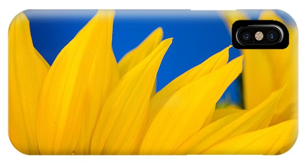 Shady Shy Sunflowers IPhone Case