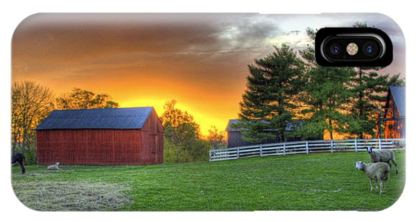 Shaker Animals At Sunset IPhone Case