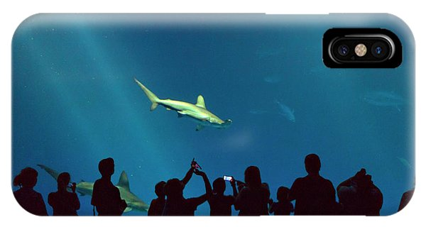 Monterey Bay Aquarium iPhone Case - Shark Alley by Brian Knott Photography