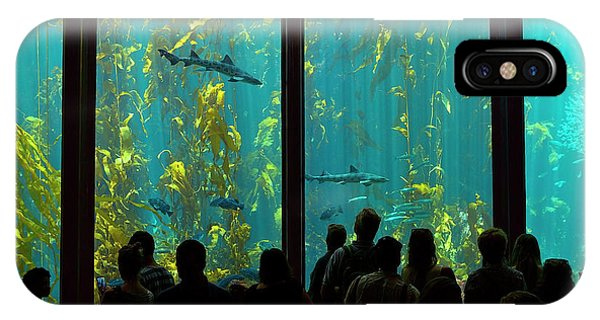 Monterey Bay Aquarium iPhone Case - Shark Infested Waters by Brian Knott Photography