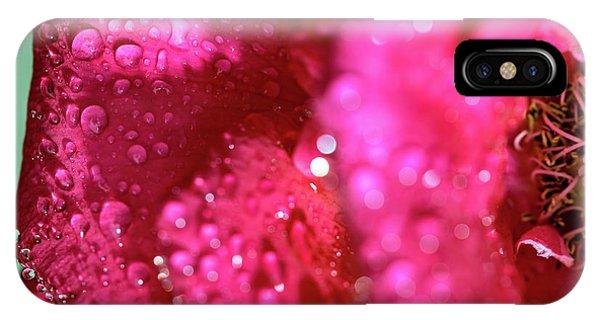 Sharp Wet Rose IPhone Case