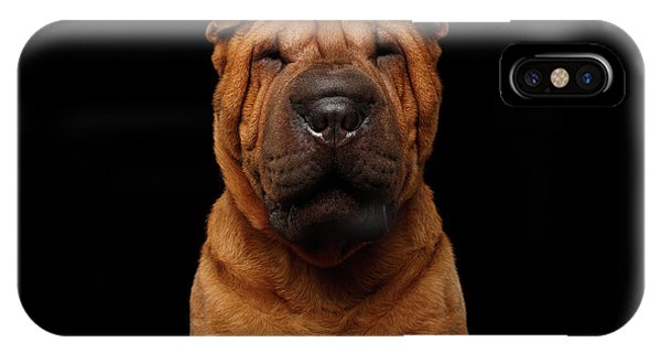 Sharpei Dog Isolated On Black Background IPhone Case