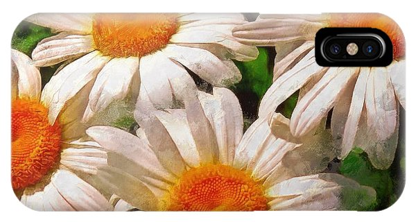 Shasta Daisies 2015 IPhone Case