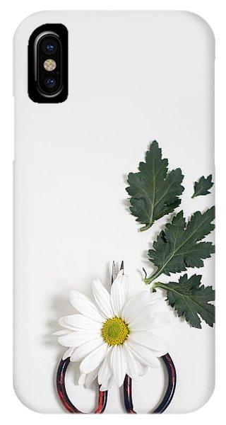 Shasta Daisy Still Life IPhone Case